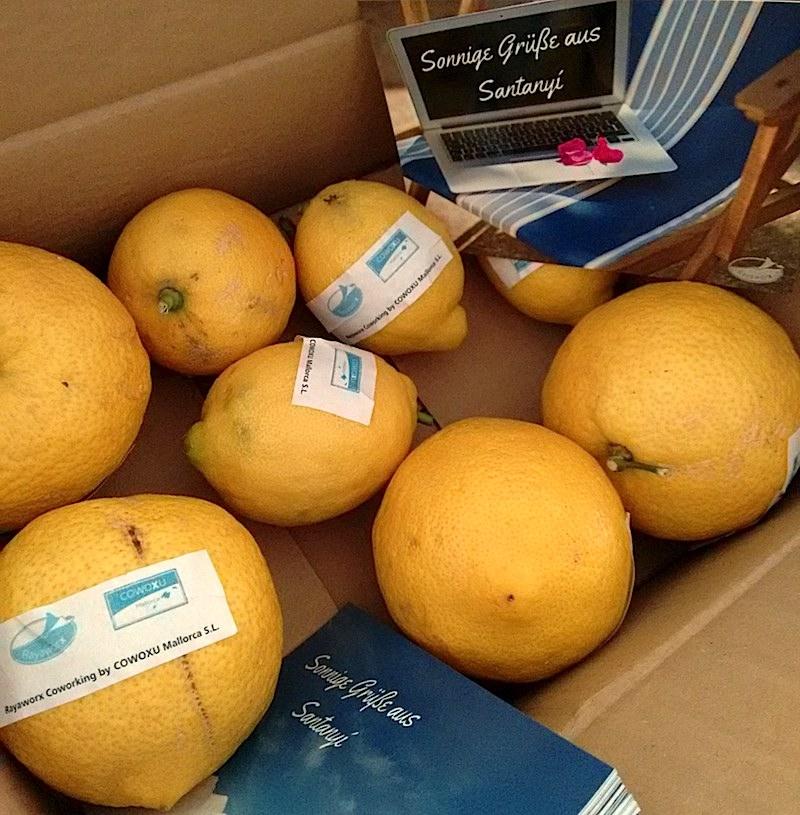 Zitronen aus Santanyí