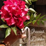 Bougainvillea Gracias Danke Thank You