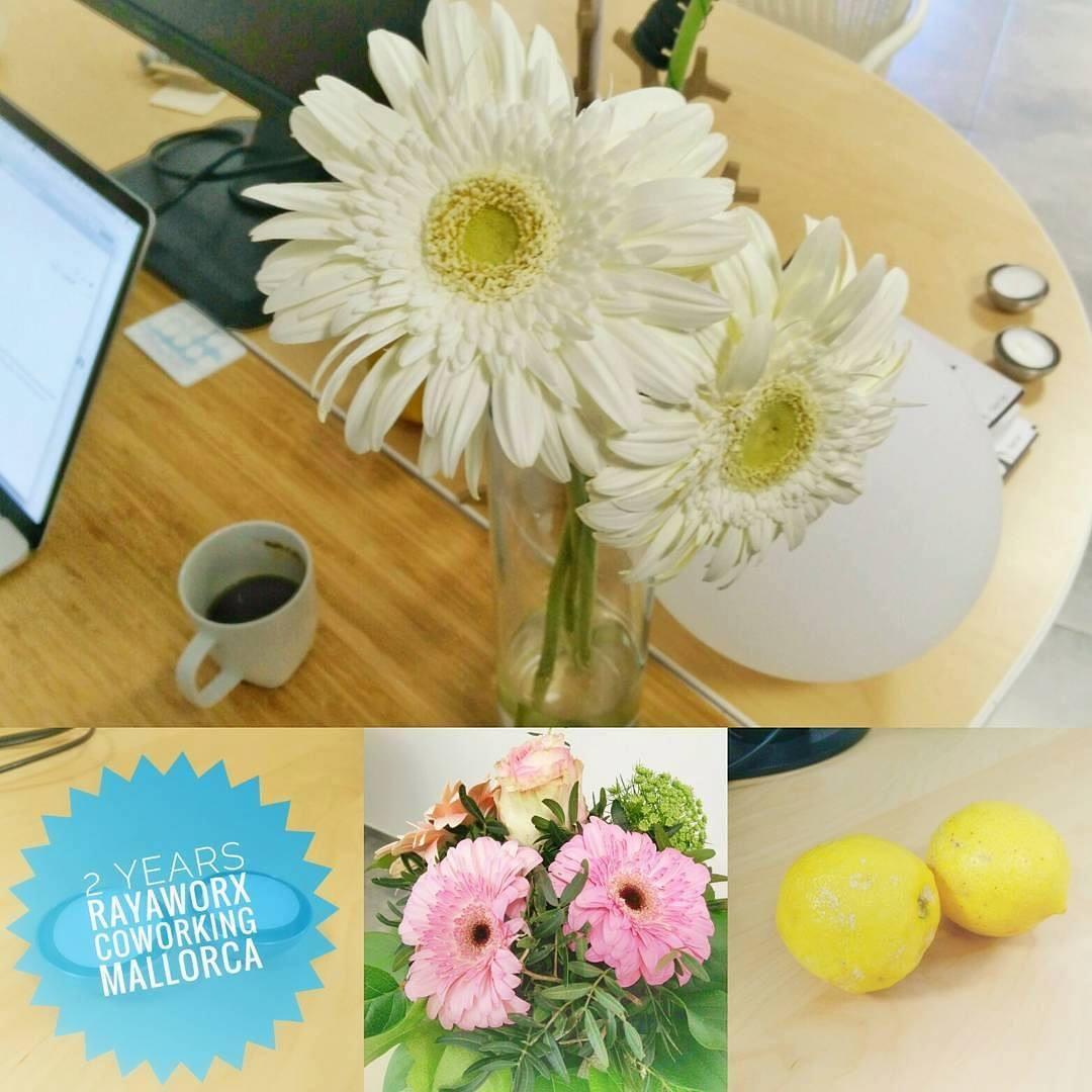 Blumen zum 2. Geburtstag