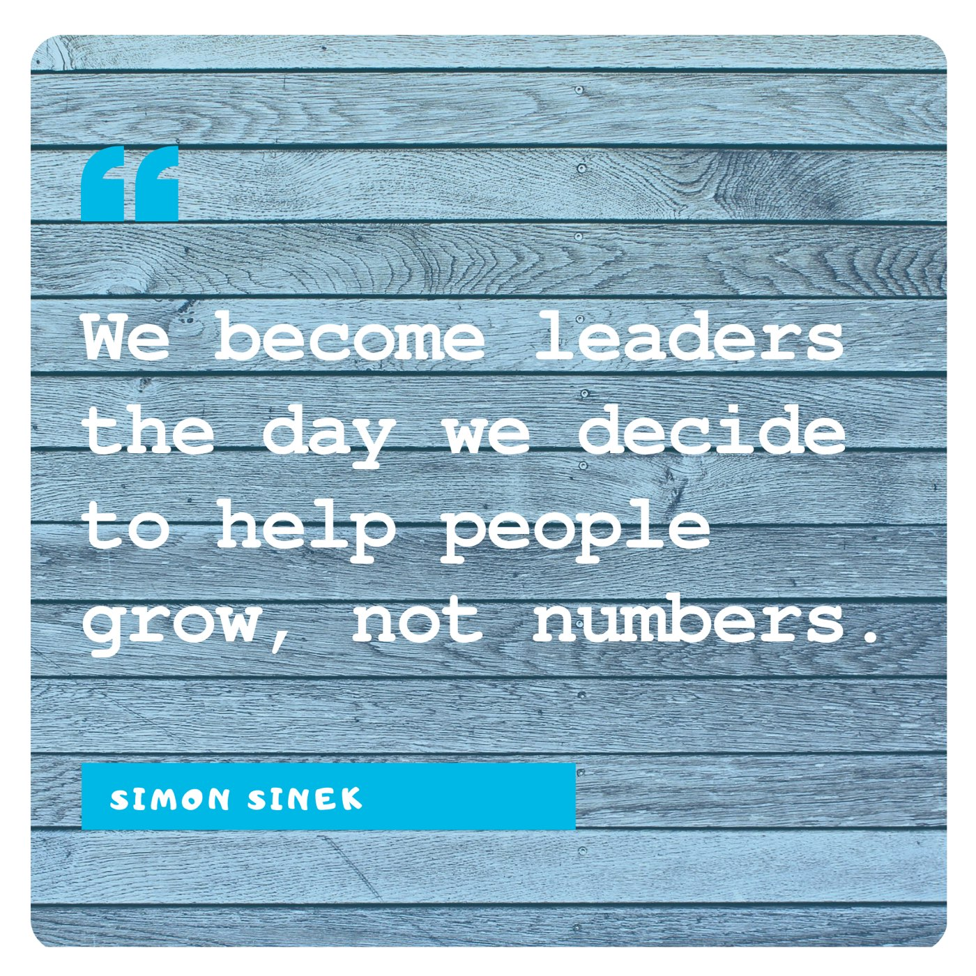 Simon Sinek: Growth